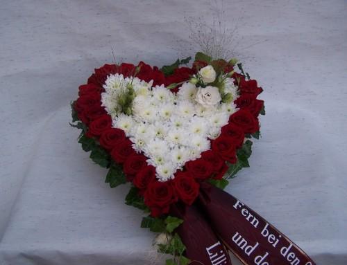 Herzen: Beispiel #7